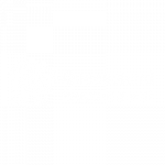 8. QLD Government